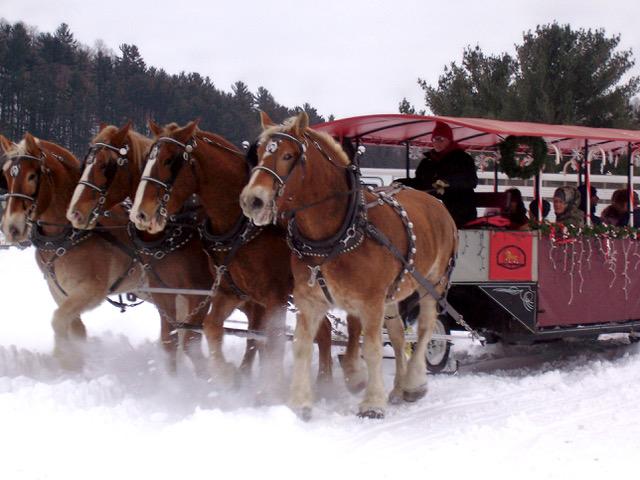 vino-sleigh-rides-.jpeg
